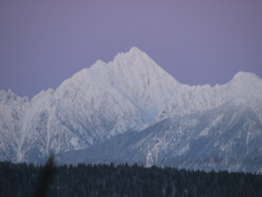 Fisher_peak